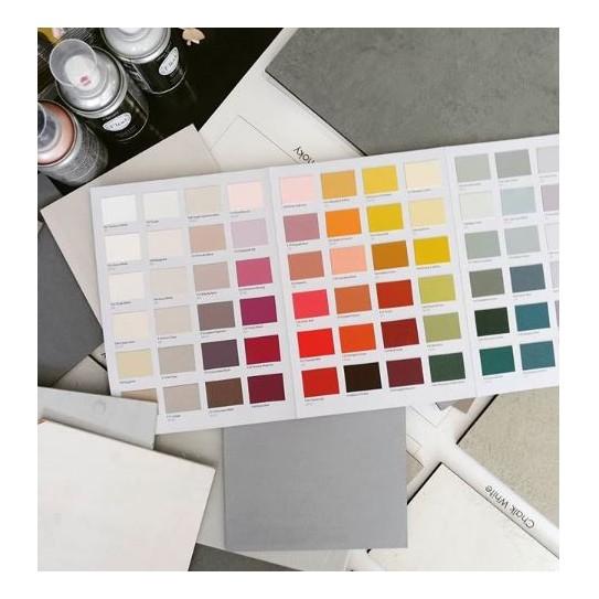 Carta de color Fleur Paint (Colour Chart)