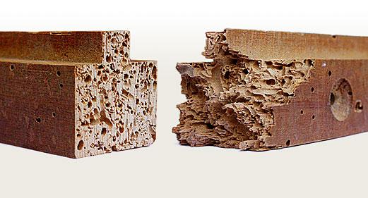 Eliminar carcoma muebles idea creativa della casa e dell - Como eliminar la polilla de la madera ...