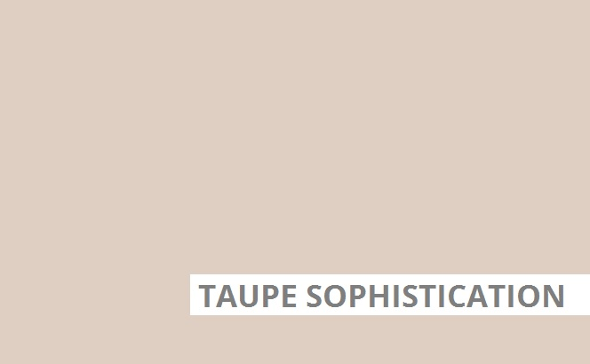 Taupe Sophistication
